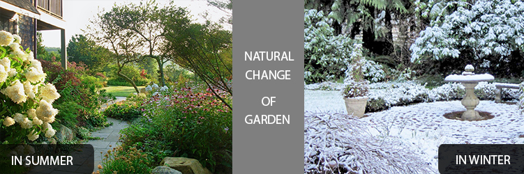 natural change of garden