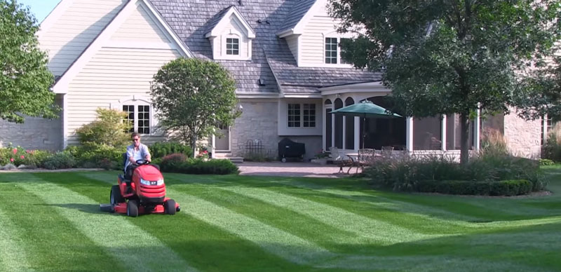 Lawn Striping Standard style